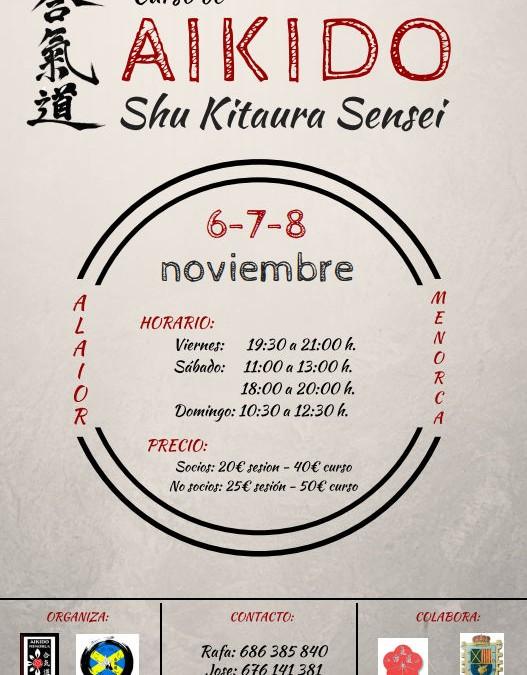 Curso de Aikido en Menorca, 6 al 8 de Noviembre 2015